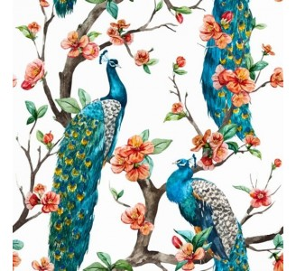 Peacock Removable Wallpaper pattern