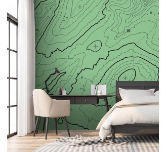 Green Topographic Map Removable Wallpaper