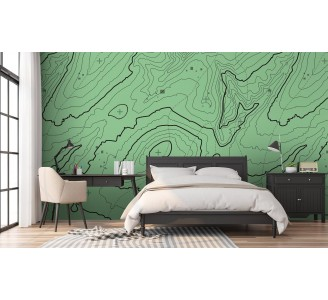 Green Topographic Map Removable Wallpaper full view