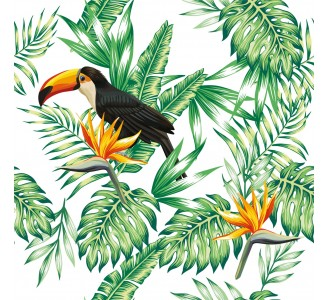 Toucan Nature Removable Wallpaper pattern