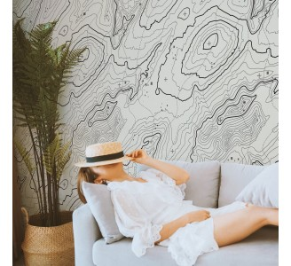 Topographic Map Removable Wallpaper