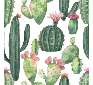Watercolor Cacti Removable Wallpaper pattern
