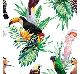 Paradise Birds Removable Wallpaper pattern