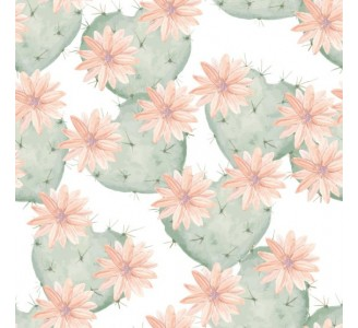 Cactus Flowers Removable Wallpaper pattern
